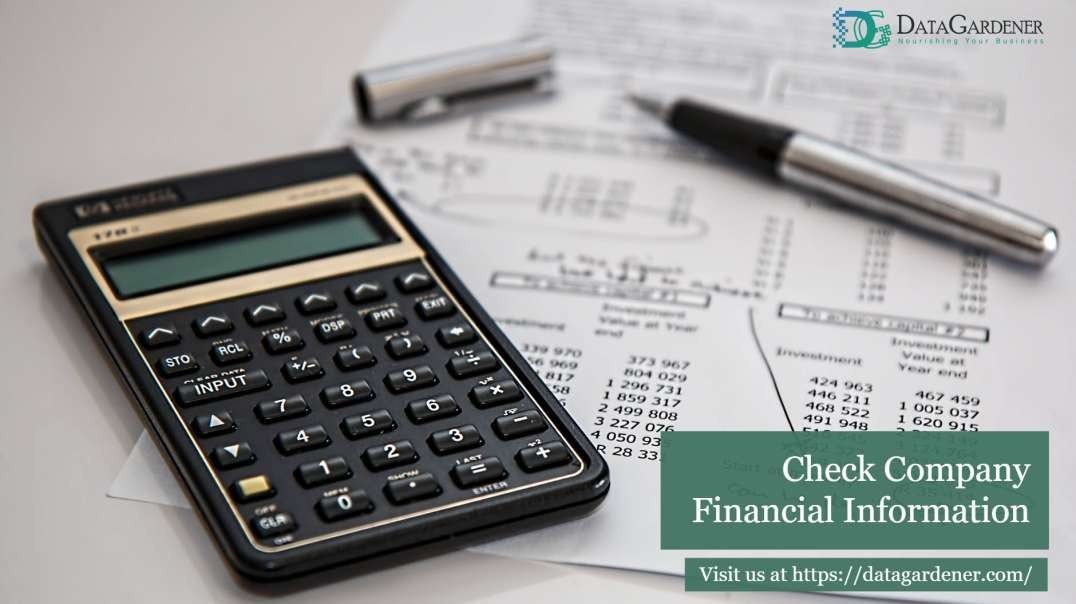Company Finance Check | Know Company Financial Status